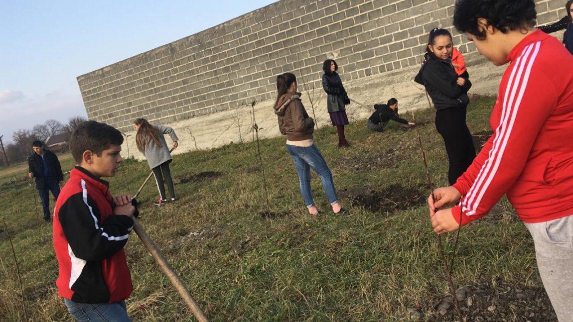 «Сад Победы – Сад Жизни» в Северной Осетии